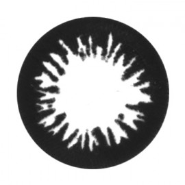 Цветные линзы HERA Black King на 3мес. от 0 до -6дптр (2шт)