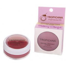 Бальзам для губ TROPICANA с ароматом ягод 10 гр