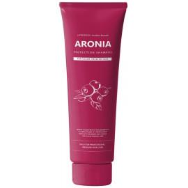 Шампунь для волос Pedison АРОНИЯ Institute-beaut Aronia Color Protection Shampoo 100 мл в интернет магазине