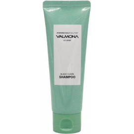 Шампунь для волос VALMONA АЮРВЕДА Ayurvedic Scalp Solution Black Cumin Shampoo 100 мл в интернет магазине