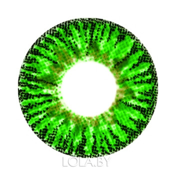 Цветные линзы HERA Elegance Green на 3мес. от 0 до -8дптр (2шт)