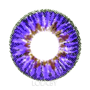 Цветные линзы HERA Elegance Violet на 3мес. от 0 до -8дптр (2шт)