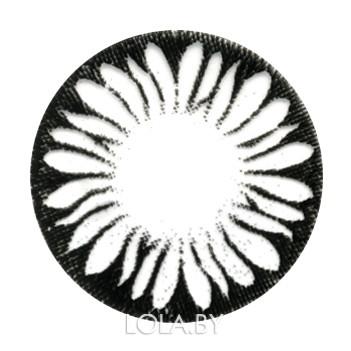 Цветные линзы HERA Black Flower на 3мес. от 0 до -6дптр (2шт)