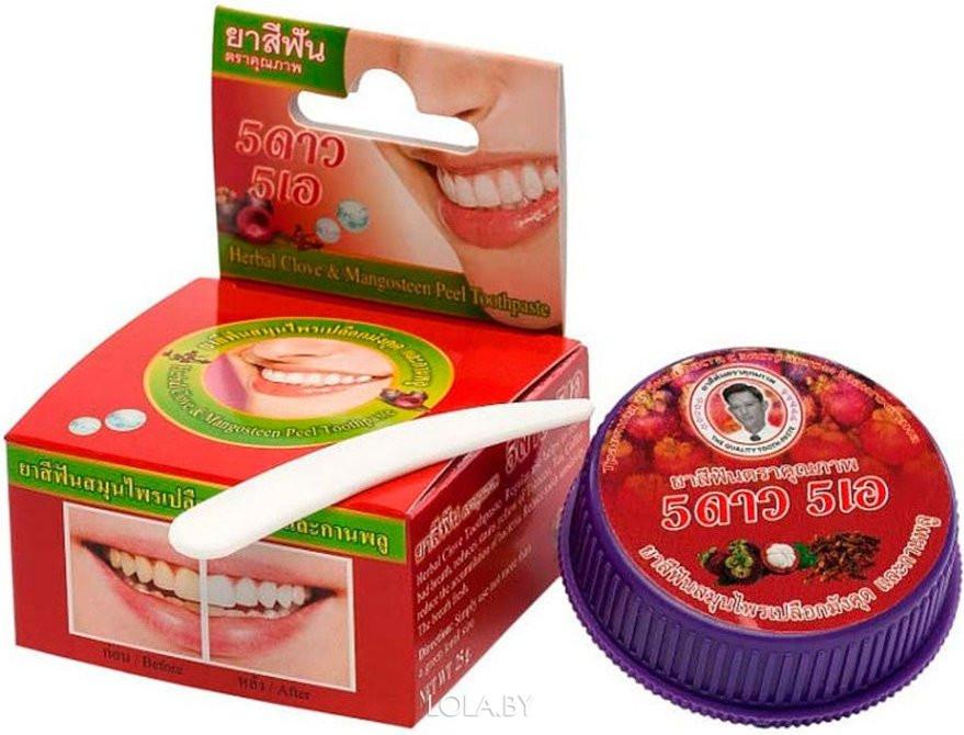 Круглая зубная паста 5 STAR с экстрактом мангостина 25 гр