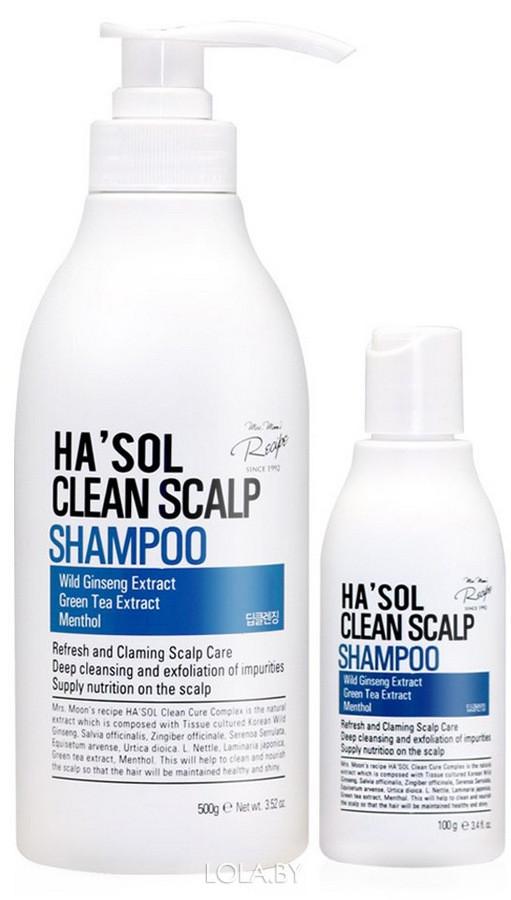Глубокоочищающий шампунь HASOL Clean Scalp Shampoo 100 мл