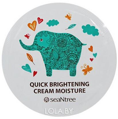 ПРОБНИК Отбеливающий крема для лица SEANTREE Quick Brightening Cream