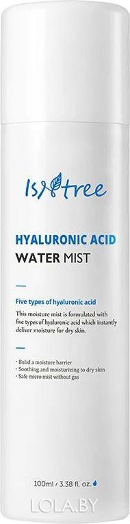 Мист для лица IsNtree с гиалуроновой кислотой HYALURONIC ACID WATER MIST 100 мл