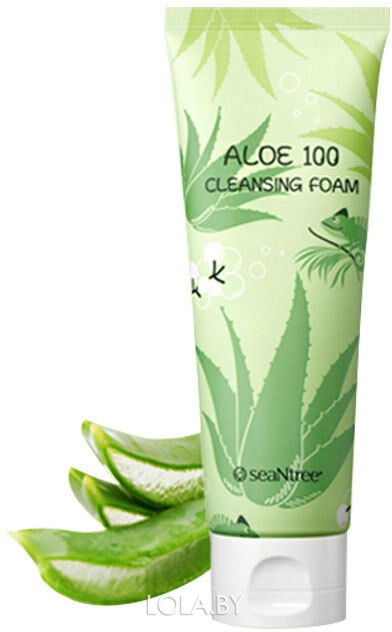 Пенка SEANTREE с алое Aloe Cleansing Foam 120 мл